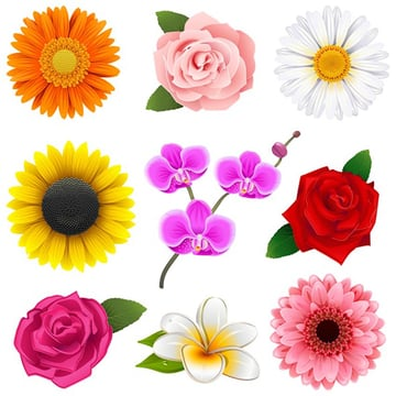 Flower Icon Pack from GraphicRiver