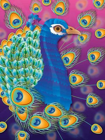 Peacock Illustration by Nina Kamberi