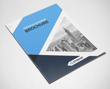 Blue Brochure