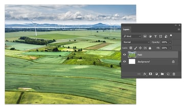 Paste the field image
