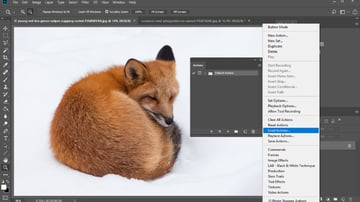 How to Load the Photoshop action