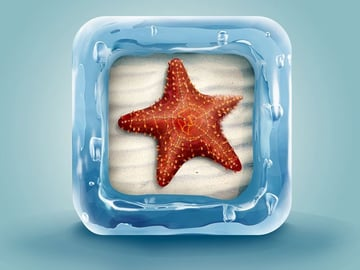 Create a Beautifully Designed 3D Starfish Icon