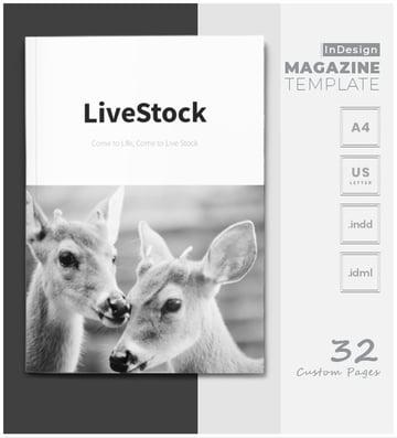 InDesign Magazine Templates
