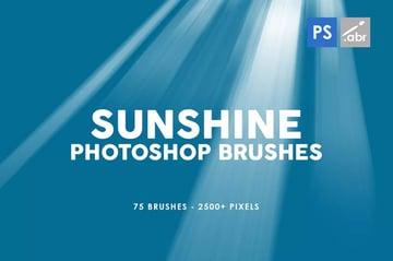 75 Sunshine Photoshop Stamp Brushes