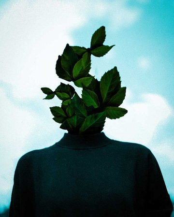 Growing Mind