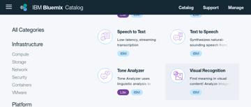 Watson services catalog