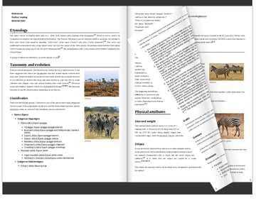 A PDF file rendered as a flip book
