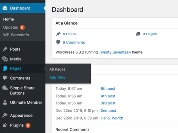 You can add a new page to your website by selecting Pages  Add New from WordPress left-hand menu