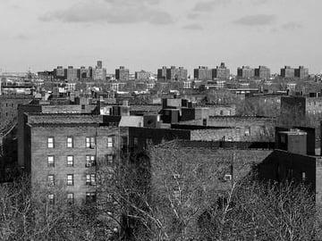 Queensbridge public housing complex, New York