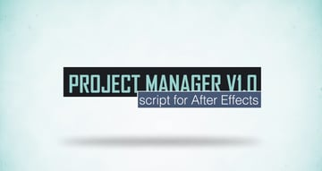 Project Manager V10