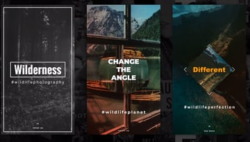 Animated Instagram Stories After Effects Template