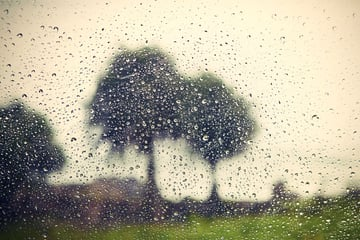 Rain by Chalabala - from Envato Elements