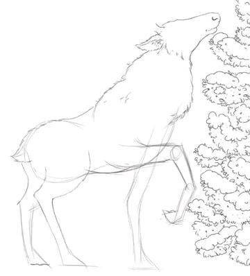 Deer line art - rough leg poses