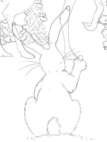 Fixed hare arm