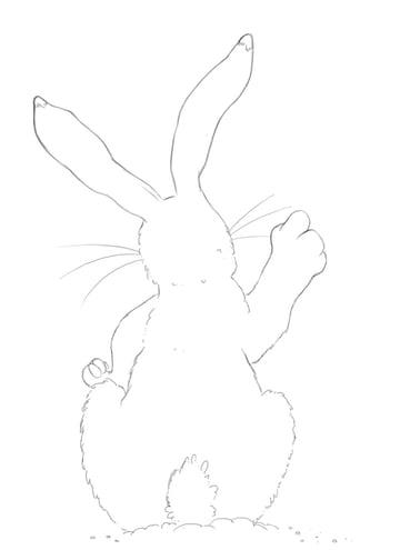 Hare clean line art