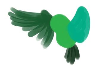 Owl Illustration - Second wing - inner