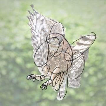 Simple shapes - inner wings