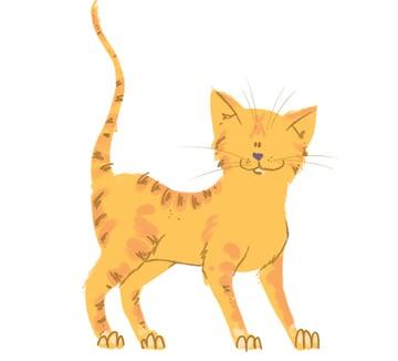 Finished cat illustration