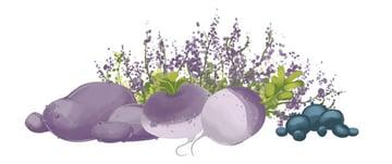 Complete Haggis Food Illustration