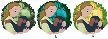 Three Colour Tests For The Jane Goodall Illustration