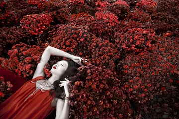 Red Dragon Photography by Lindsay Adler