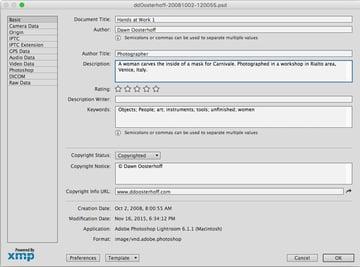 Computer dialogue showing metadata fields