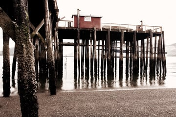 A digital photograph of a pier at low tide processed as a desaturated monochromatic image