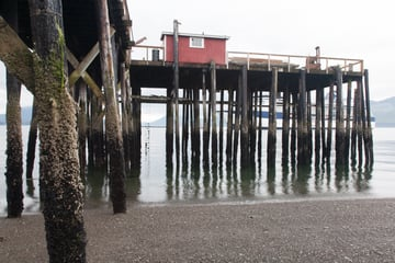 A digital photograph of a pier at low tide without any adjustments