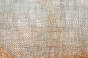 Abby Lanes texture 2