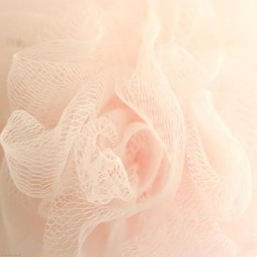 chiaralily texture