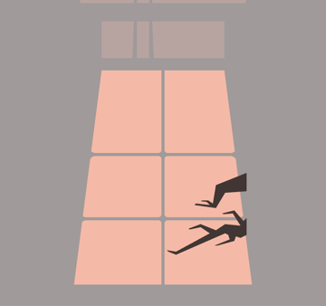 adding the tree branches to the illustrations projected window