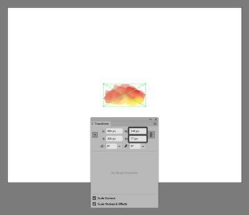 example of resizing the scanned image