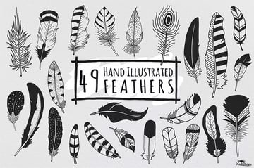 49 Hand Illustrated Feathers
