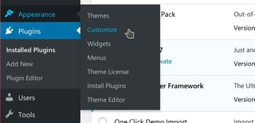 Access the theme customizer