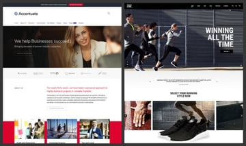 WordPress sites can wear a business theme or a sports theme