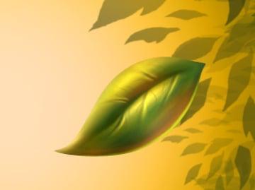 Leaf final