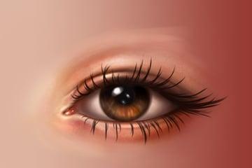 Eyelashes base