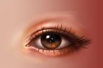 Eyelashes shadows