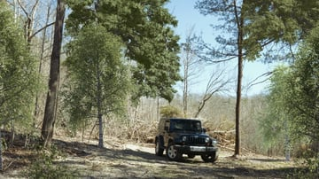 Composite image of a truck in the woods with extra trees
