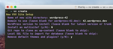 VV Prompt in Terminal Remove default themes and plugins