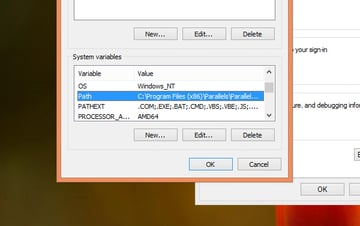 Windows System Path