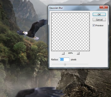 eagle 1 blur