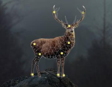 deer puppet warp