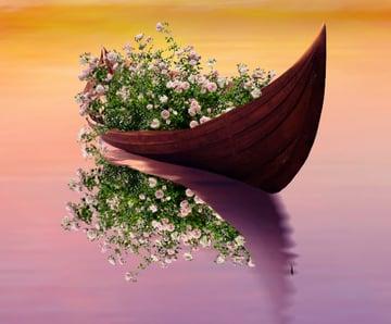 roses on boat flip vertical