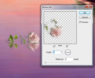 big rose motion blur
