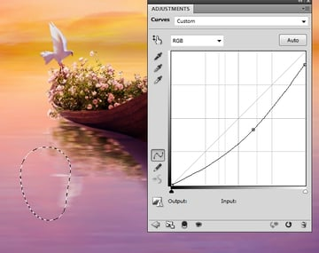 dove curves