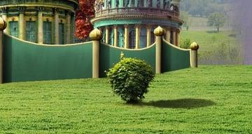 tree 5 shadow