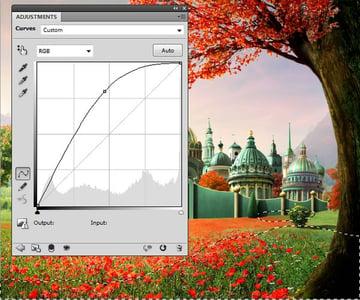 field curves