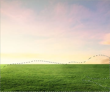 grass curves result