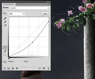 flowers 2 curves